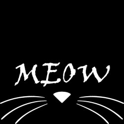 T-Shirt Donna Bafo Meow