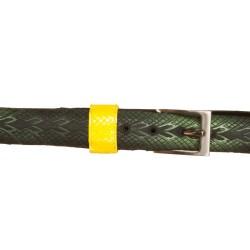 Cintura gomma